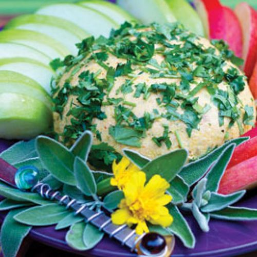 Fiesta Margarita Cheese Ball